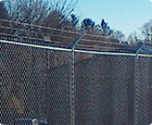 chain-link fences